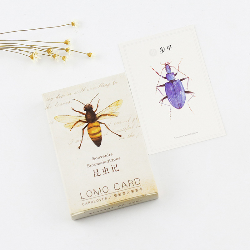 28 pcs/set Wild animals insects mini card greeting card lomo memo card kids gift postcard kawaii stationery school supplies switzerland men wristwatches luxury brand watches binger luminous automatic self wind full stainless steel waterproof b5008 2