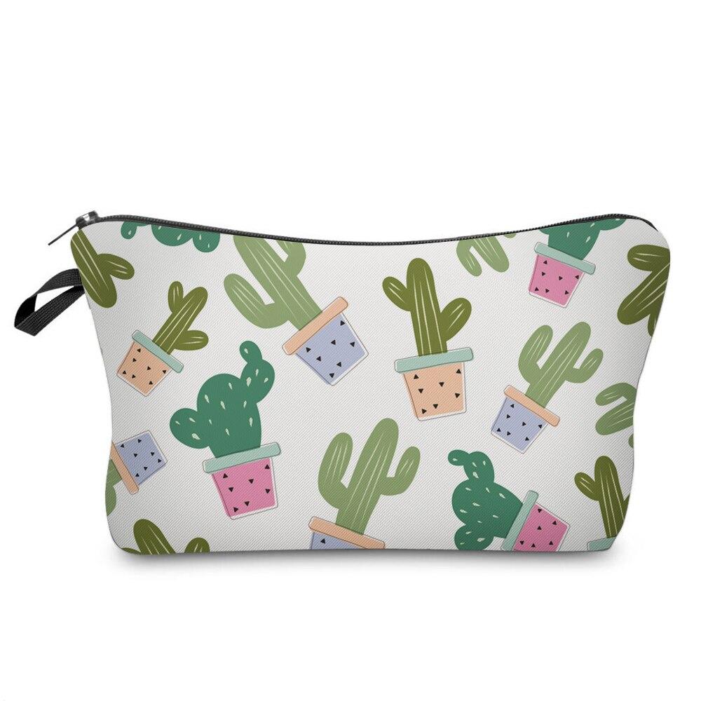 35509 kaktusy
