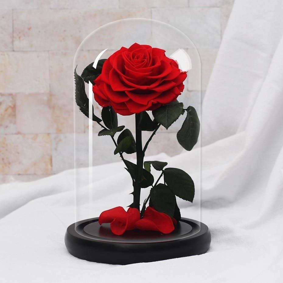 Подарки ко дню Святого Валентина красота и чудовище роза цветок в стеклянном куполе Рождество для украшения стола вечные цветы - Цвет: red