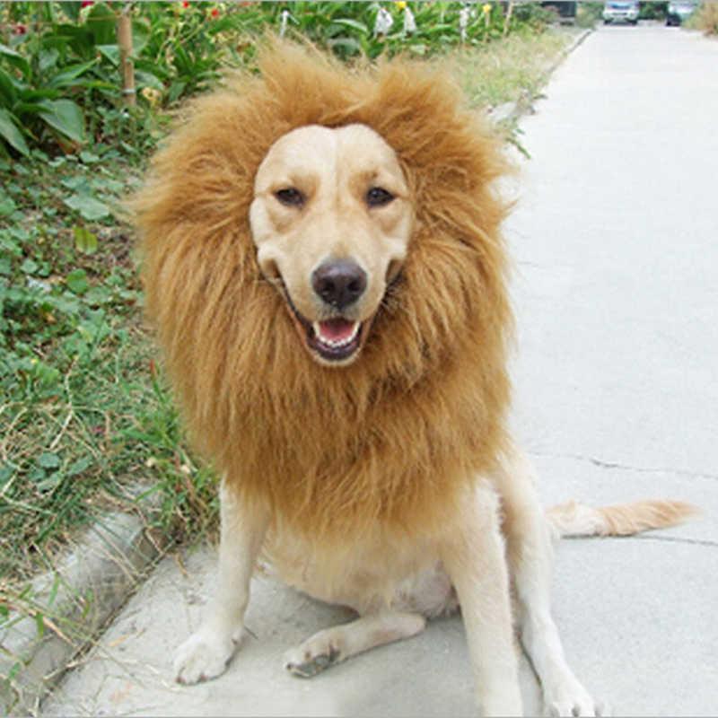 Słodkie zwierzątko ubrania typu cosplay kostium przemienienia lwia grzywa zimowa ciepła peruka kot duży pies strona dekoracji z ucha odzież dla zwierząt