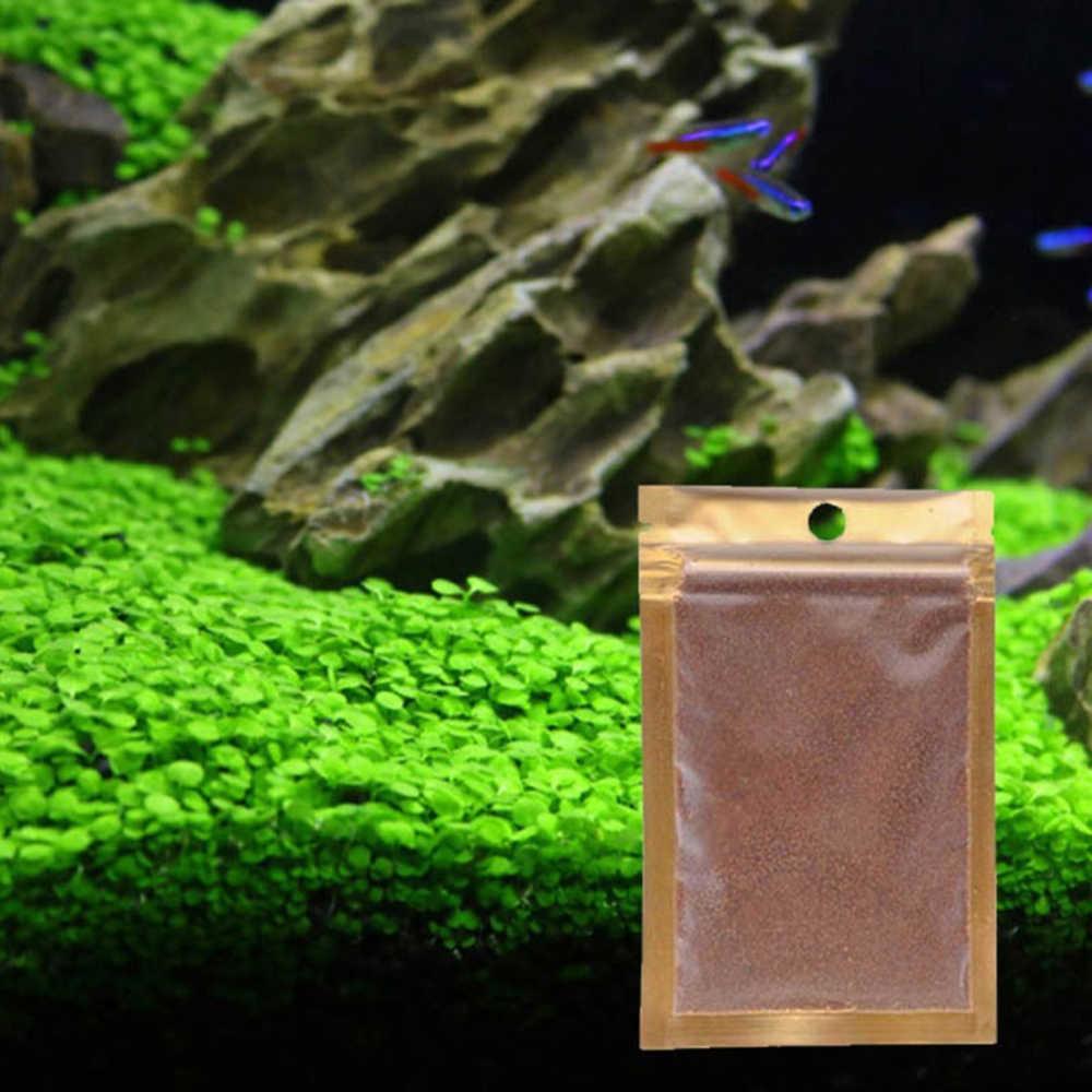 Aquarium plante graine glossostigmate hémianthus Callitrichoides facile croissance plantes d'eau herbe Aquarium paysage ornement décor