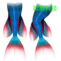 swimmable girls mermaid tails for swimming kids adult women mermaid tail with monofin flippers of adults children swimsuit woman