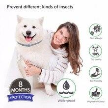 Summer Anti-insect Cat Dog Collar Anti Flea Mosquitoes Ticks Waterproof Cat Flea Collar Dog Accessories Pet Heal Caring Tool