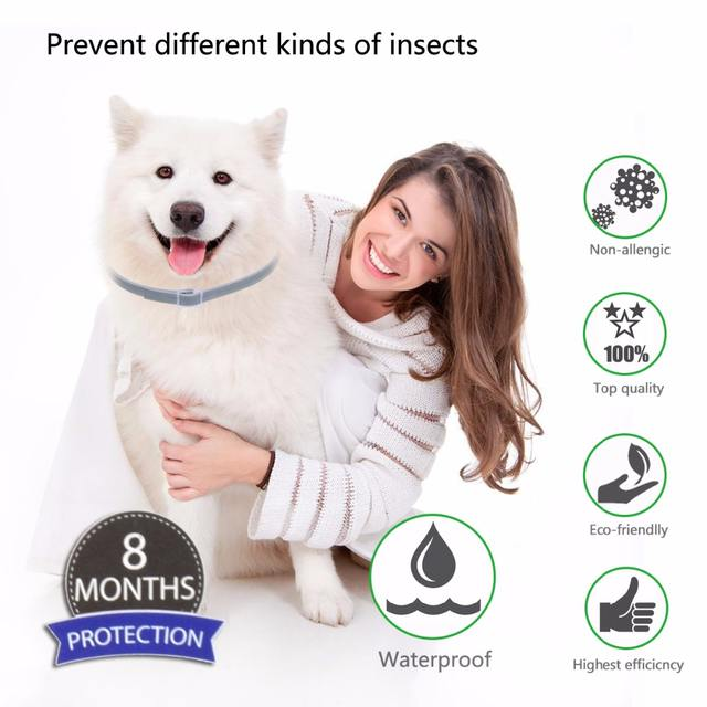 Anti-insect Cat Dog Collar