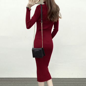 Autumn Winter Women Knitted Dress Turtleneck Sweater Dresses Lady Slim Bodycon Long Sleeve Bottoming Dress Vestidos PP021 2