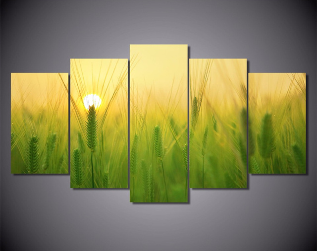 2017 5 Pieces Canvas Prints Wall Painting Barley Field Sun Art ...
