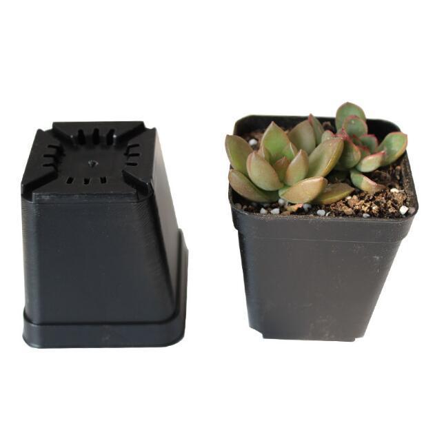 10pcs/lot 7*7*8cm Black Color Flower Pots Planters Pot Trays Plastic Pots Creative Small Square Pots for Succulent plants GYH