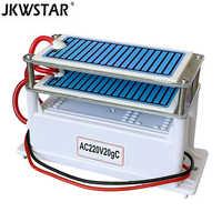 220V 20g/5g Portable en céramique générateur d'ozone Double intégré longue durée de vie en céramique plaque ozonateur air purificateur d'eau purificateur d'air