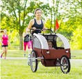 Dual-use multi-function baby strollers carts and trailers