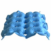 2Pcs Pack Decubitus Prevention Medical Air Seat Cushion Inflatable Wheelchair Square Porous Emerods Pads For