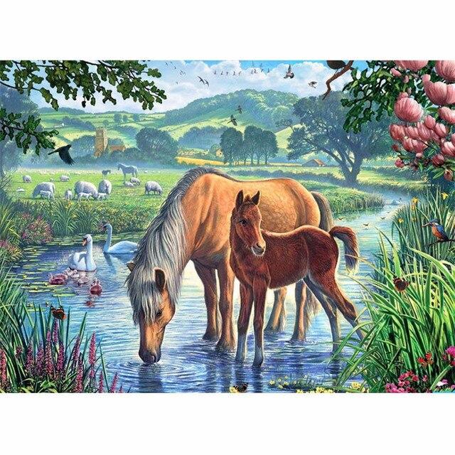 "CHUNXIA ממוסגר ציור DIY על ידי מספרים בעלי חיים סוס אקריליק ציור מודרני תמונת בית תפאורה לסלון 40x50 ס""מ RA3144"