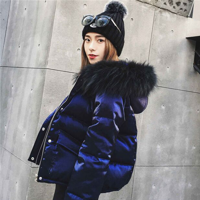 Large Real Natural Raccoon Fur 2018 Winter Jacket Women Fashion Style Parkas White Duck Down Jacket Short Thick Warm Coats
