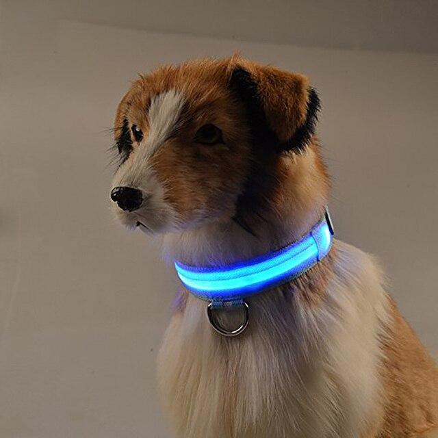 USB Ricaricabile LED di Nylon Pet Dog Collar Notte di Sicurezza Anti-perso Lampe