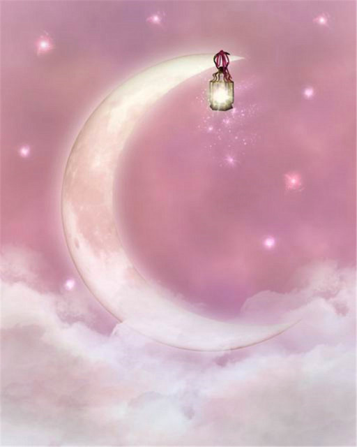 Pink Moon Backdrops White Star Digital Printed Photography