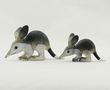 Free shipping SCIENCE AND NATURE Australia's wild animal model-Common rabbit-bandicoot