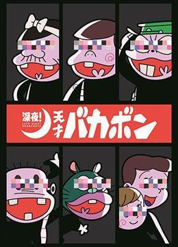 《深夜!天才傻鹏》2018年日本动画动漫在线观看