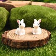 2pcs/pair Hot Mini Rabbit/Hedgehog /Tortoise Ornament Miniature Figurine Plant Pot Fairy Garden Decor Home Decoration 2pcs