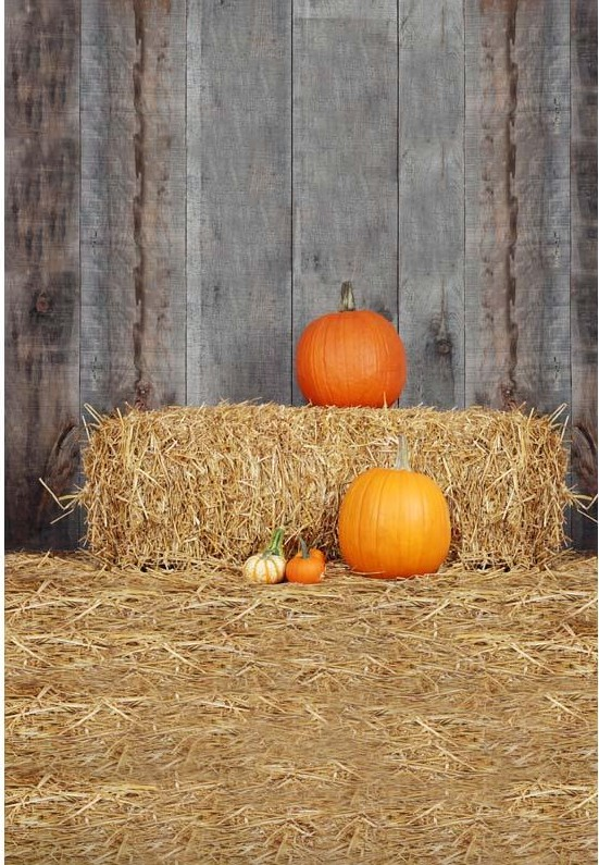 Straw Pumpkin Country Old Barn Backdrops Vinyl Cloth High Quality Computer Printed Halloween Backgrounds In Background From Consumer Electronics On