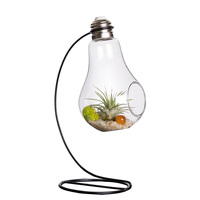 Mkono Bulb Shape Hanging Planter Terrarium Air Plants Container Pot Succulent Display Vase With Black Metal