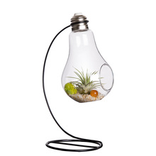 Mkono Air Plant Terrarium Airplants Glass Vase Succulent Hanging Container Table Plants Planter with Metal Stand, Bulb shape