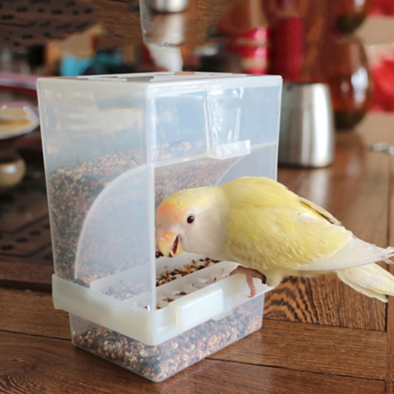 Bird Poultry Feeder Automatic Acrylic Food Container Parrot Pigeon Splash Proof bird feeder
