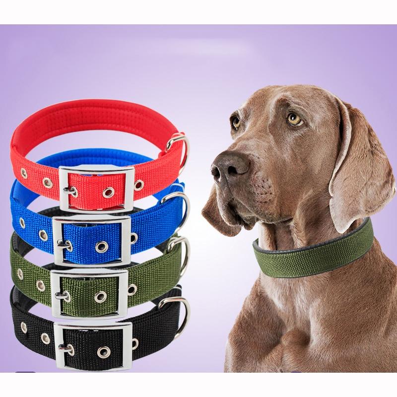Collari per cani solidi collare per cani in Nylon per cani di taglia medio-piccola Teddy Keji Pitbull Bulldog Beagle 2