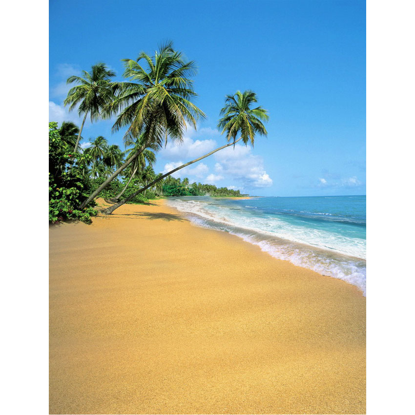 Palm trees on golden sea beach photography backdrop fabric background for photo studio photography background props photophone abm sharif hossain and fusao mizutani dwarfing peach trees grafted on vigorous rootstocks