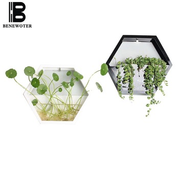 Brief Solid Color Acrylic Wall Vase Hydroponics Plant Holder Flower Pot Hanging Vases for Home Decor Crafts Bonsai Planter Art 1