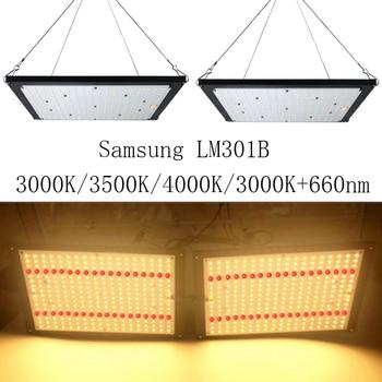 Super Luminoso 120 W 240 W Led Coltiva La Luce Quantum Bordo Spettro Completo Samsung LM301B SK 3000 K 3500 K 4000 K 660nm Meanwell Driver FAI DA TE
