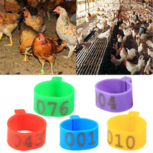 Ring-Carry-Tools Chicken-Leg-Bands Poultry-Rings Pigeon Bird Quail 5-Colors 100pcs Feeding-Logo