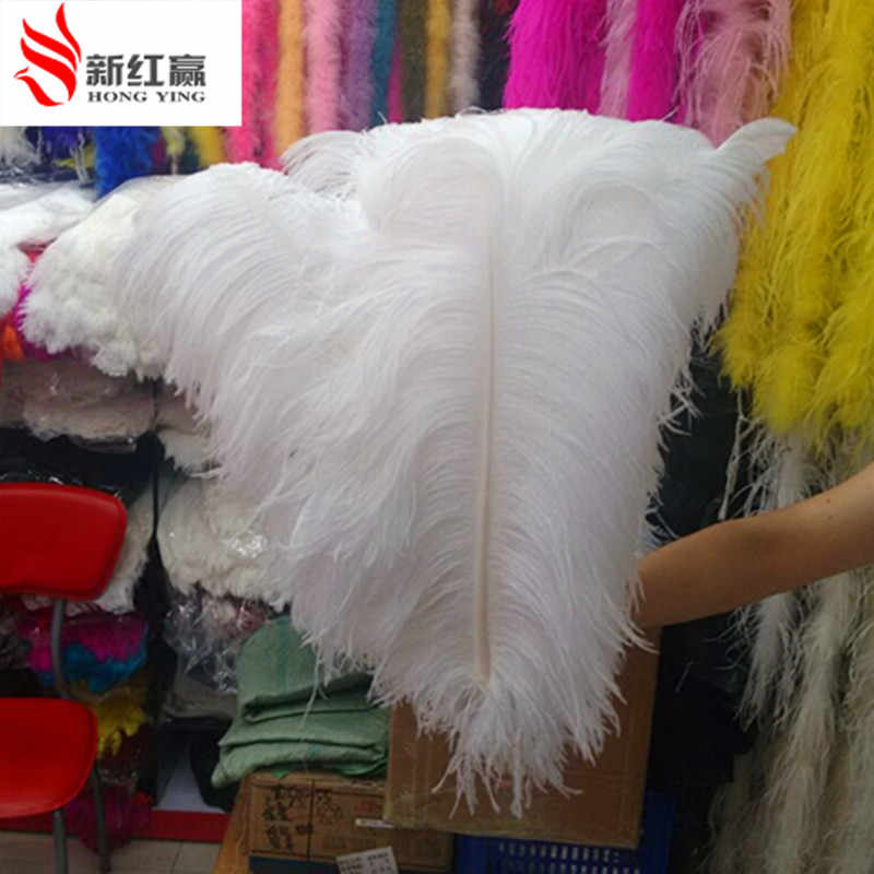 Detail Feedback Questions About Big Pole Ostrich Feather White