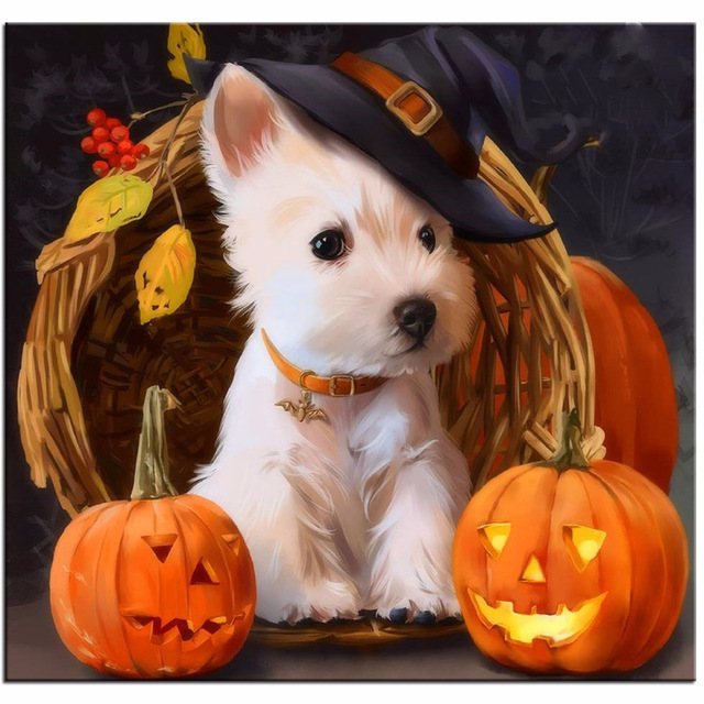 Compare Prices on Pumpkin Decorating Kits- Online Shopping ...