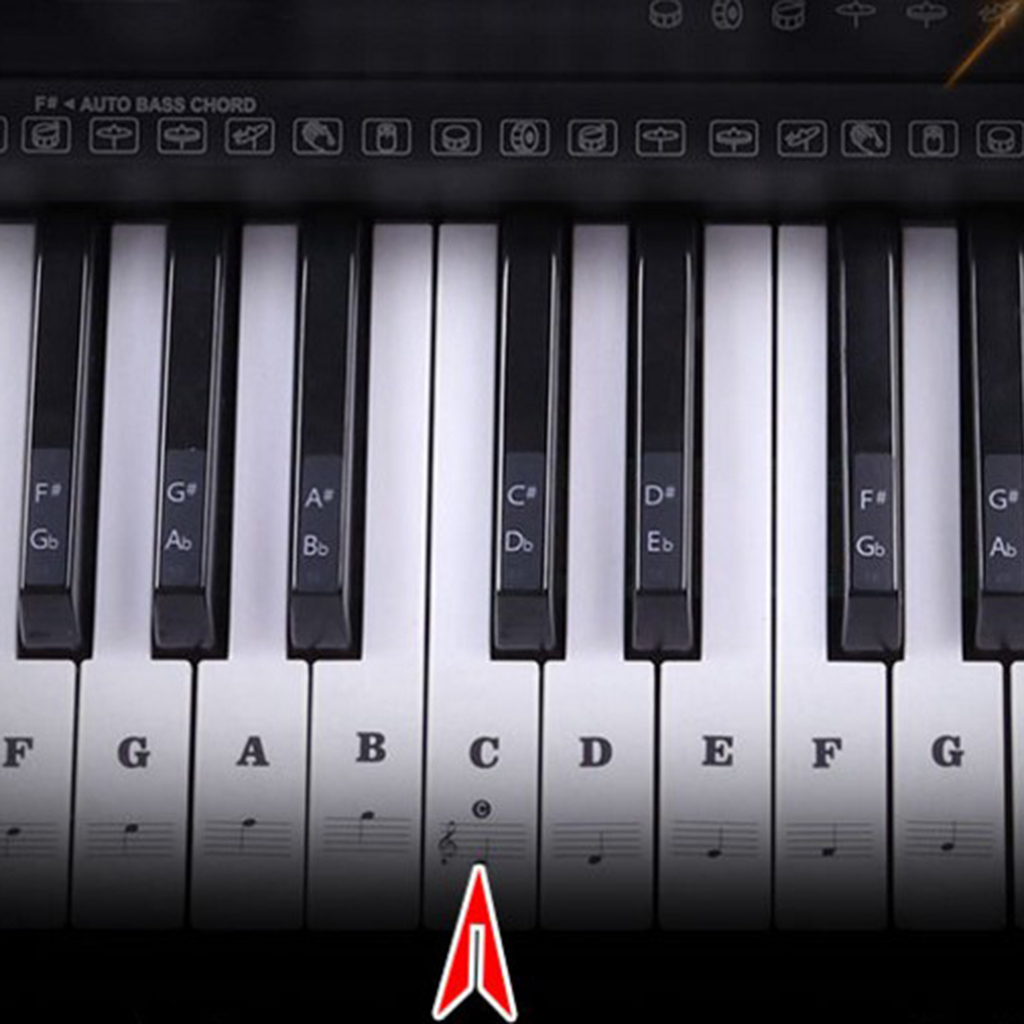 Купить с кэшбэком Beginners Piano Sticker 49/54/61/88 Key Piano Sticker Music Note Keyboard Sticker Decals Lables Decals for Electronic Piano Part