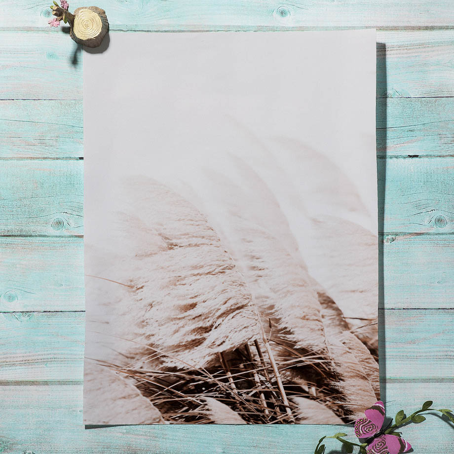 Farm Plant Flower Leaves Wheat Landscape Wall Art Canvas Painting Nordic Posters And Prints Wall Pictures Farm Plant Flower Leaves Wheat Landscape Wall Art Canvas Painting Nordic Posters And Prints Wall Pictures For Living Room Decor