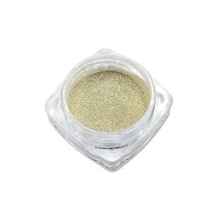 Image 2 - 0.5g Champagne Zilveren Spiegel Metallic Kleur Nail Glitter Poeder Dazzling Silver Holografische Pigment Nail Art Decoratie CH820/C