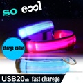 USB LED perro Collar mascota luz Noche de seguridad luz-up parpadeante resplandor en la oscuridad iluminado gato Collar LED perro collares LED USB recarga