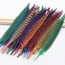 5pcs/lot Pheasant Feather Goose Christmas wedding dance costumes hat earrings Diy Decorative materials optional