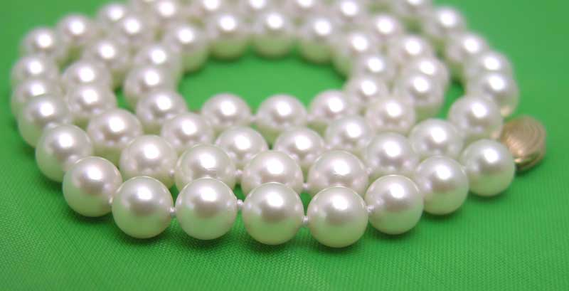 SALE AAA 6-6.5 MM AKOYA Natural White Sea Pearl Necklace With Solid Gold Clasp-nec5010 whole sale and retail Free shipping 1000g high quality natural berberis aristata extract powder 6 1 hot sale with free shipping