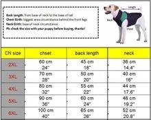 Plaid Medium Large Dog