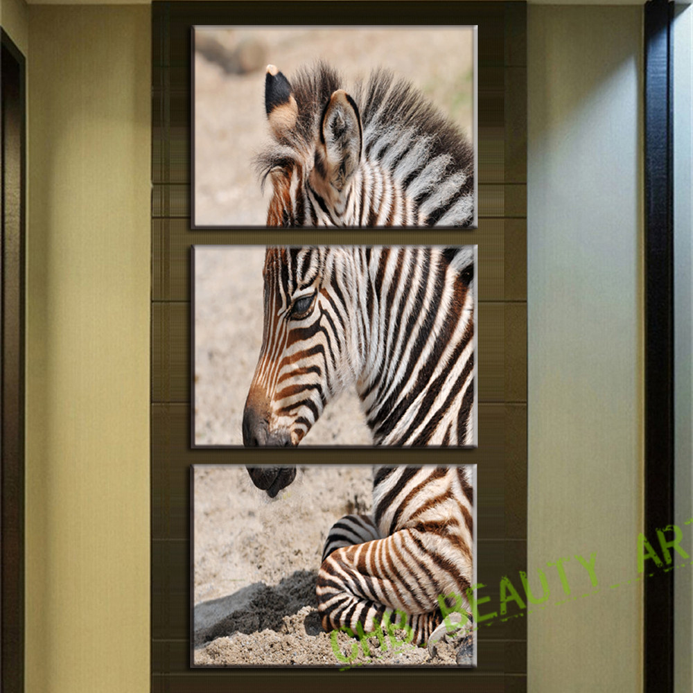 Large Zebra Picture Promotion Shop for Promotional Large Zebra