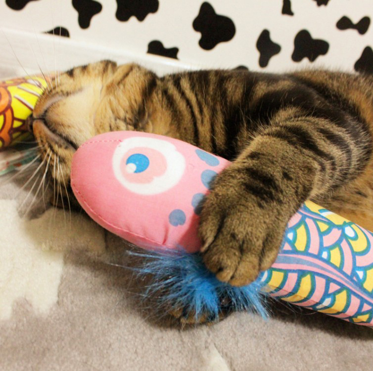 Fish design Fancy Catnip Cat Toy trainning Colorful Fish Cat Funny Toys Teaser Pet Toys Pillow