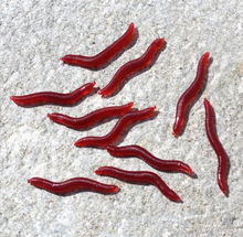 Luminous false bait worms, roads and bait, bionic red worm soft bait, use can be used for all kinds of fish hook