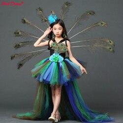 Elegante sonho menina pavão festa de flores tutu vestidos para o dia das bruxas com trem tule pavão princesa crianças festa noite vestido