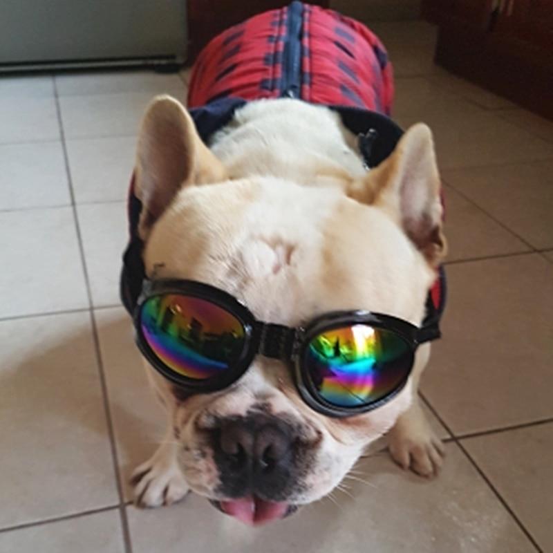 Fashion Cool Dog Solglasögon Hund Hund Ögonskydd Skyddsglasögon Medium Large Dog Accessories Sommar Pet Products 12d30S2