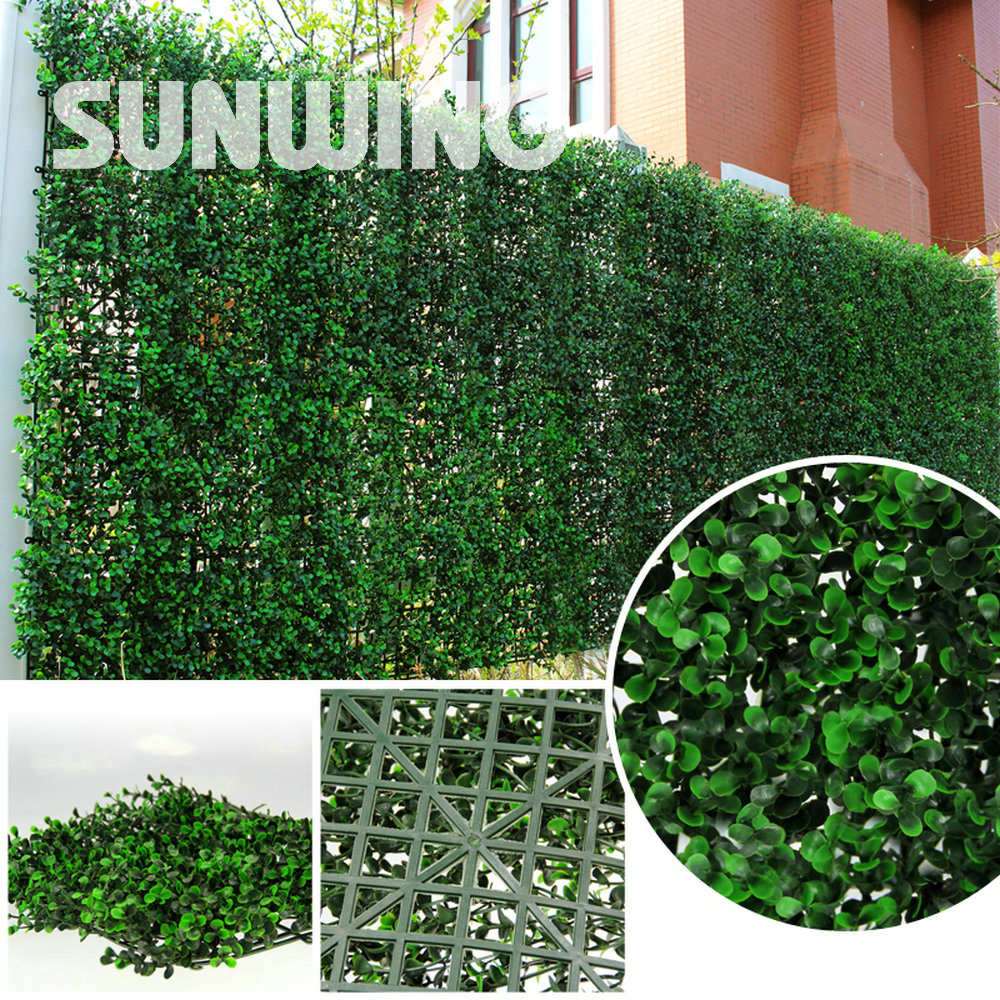 Online get cheap plant fence alibaba group for Plants for outdoor garden