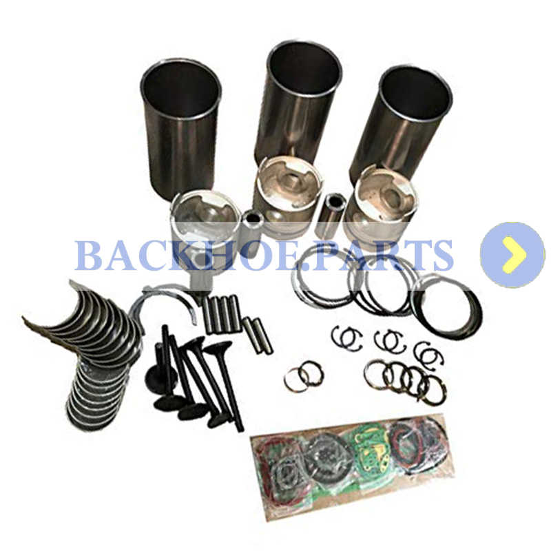 Detail Feedback Questions about 3TN84RJ Overhaul Rebuild Kit