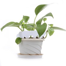 100Pcs Plant Tag T-type Plastic Plant Tag Garden Gardening Label Plant Flower Nursery Label Tag Marker Thick Tags 6.8*4.8cm