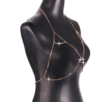 Shiny Rhinestone Stylish Necklace Bra3
