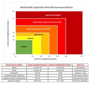 Image 5 - Auto Digital Upper Arm Blood Pressure Monitor Large Cuff Heart Beat Meter Machine Home BP  Health Care Antarestec PH20