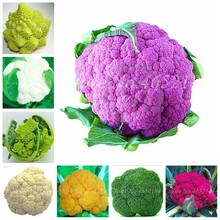 100 pcs Rare Organic Romanesco Tower Broccoli Bonsai, Roman Cauliflower Fractal Heads Broccoflower Vegetables DIY Home & Garden(China)